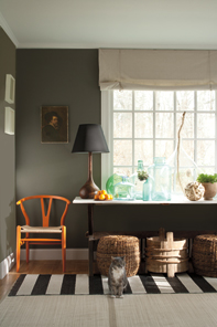 Benjamin Moore Williamsburg Color Collection, LR
