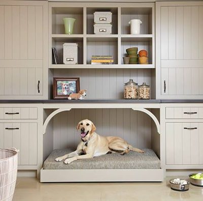 Dog Friendly Decorating Ideas