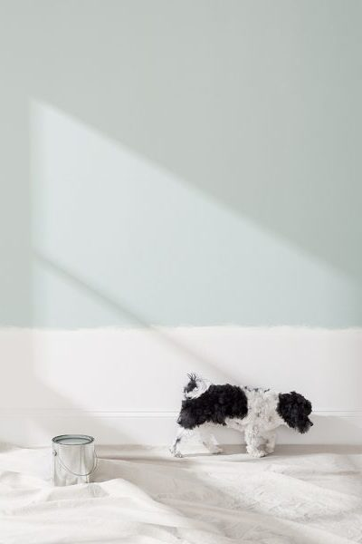 New! Crate&Barrel Home Interior Paint Colors