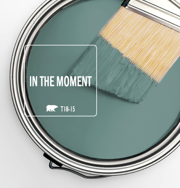 In the moment brush - Behr color of the year ...
