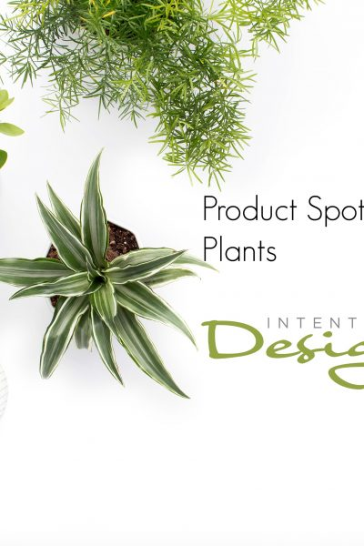 Plants: Product Spotlight